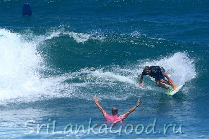 Серфинг, кайт школы