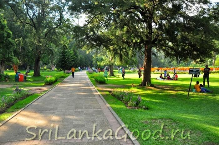 Парк для прогулок