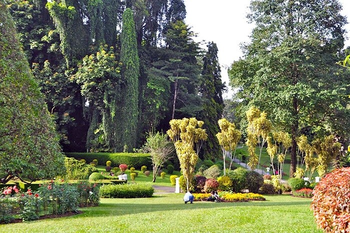 Ботанический сад в Перадении в Канди