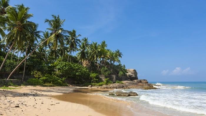 Погода в Шри-Ланке