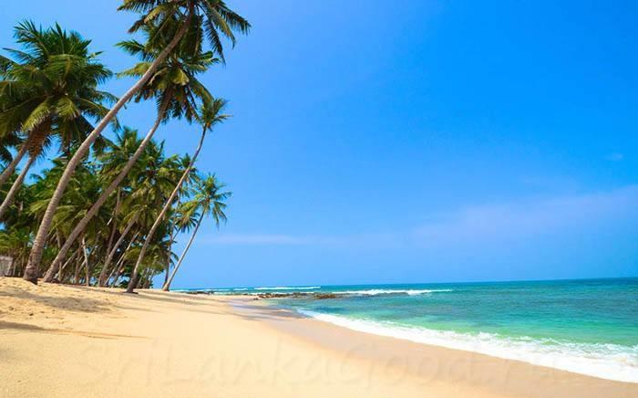 Какой песок в Тринкомале